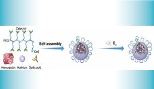FHS develops novel nanoprocessor for cancer treatment