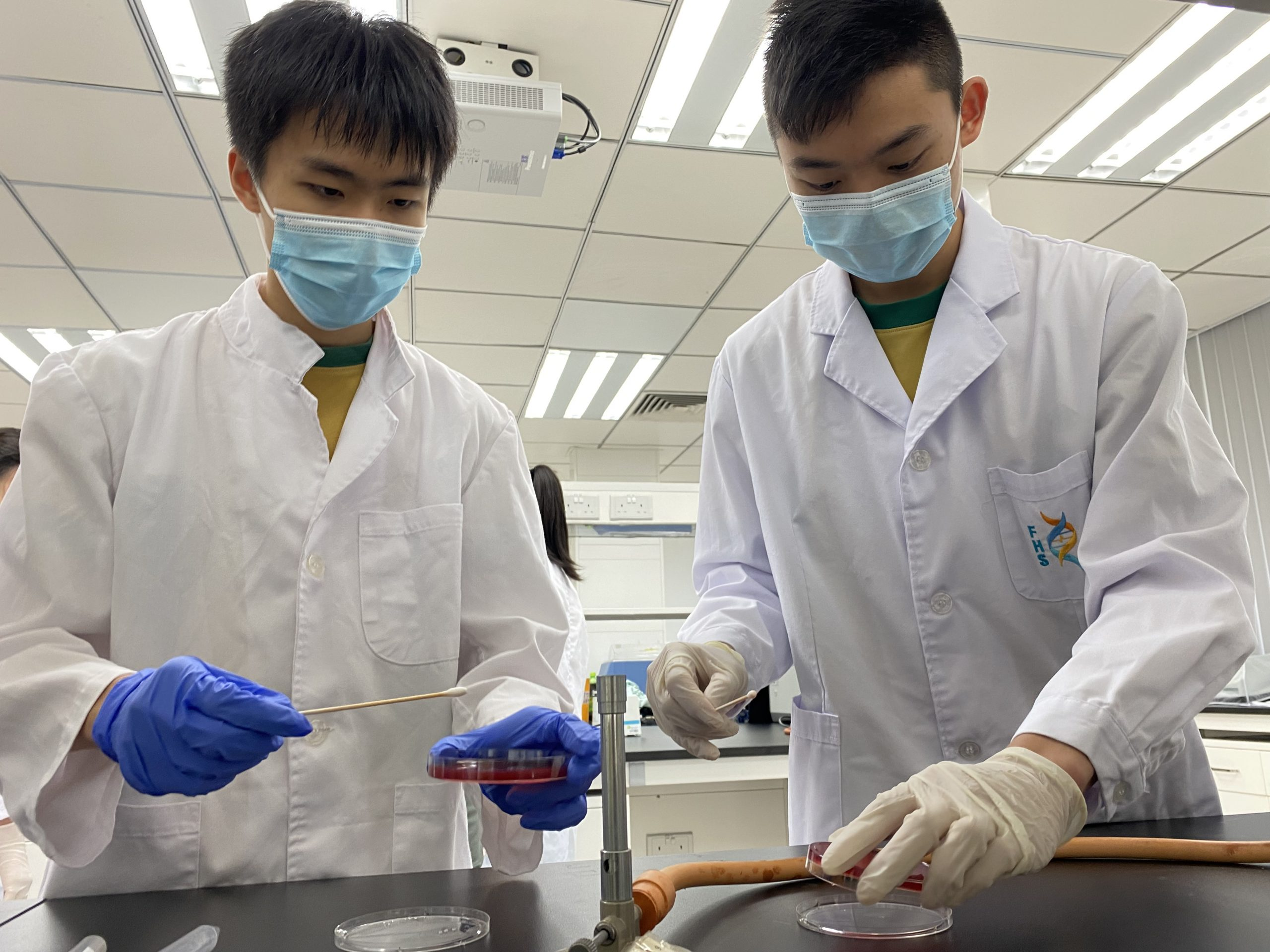 UM FHS organises science popularisation activity for secondary school students