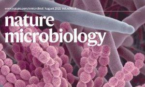 澳大健康科學學院真菌研究新突破 有助減低免疫力弱人群受真菌感染